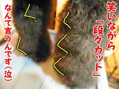 022_20120831212207.jpg