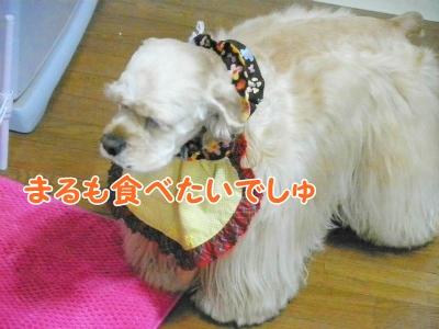 022_20121213223720.jpg