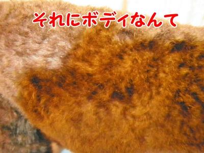 023_20120831212206.jpg