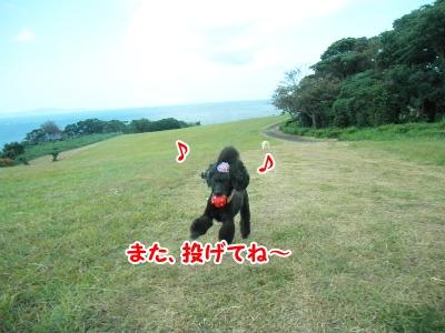 023_20120924212012.jpg