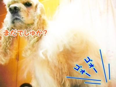 024_20120915222608.jpg