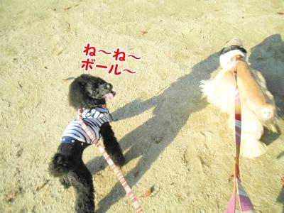 024_20121031213501.jpg