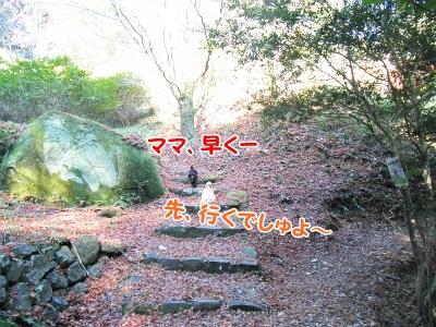024_20121208191227.jpg