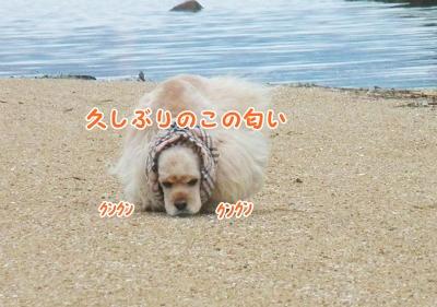 025_20120723214347.jpg
