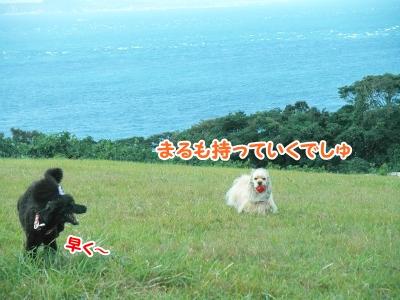 025_20120924212011.jpg