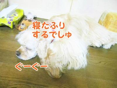 030_20120831213027.jpg