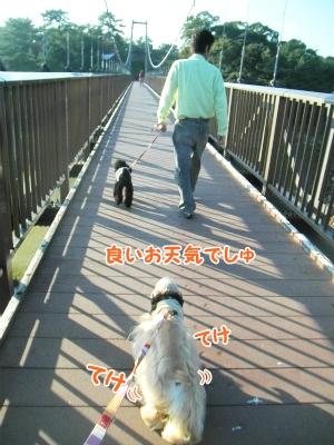 030_20121031213501.jpg
