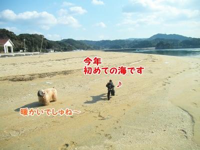 032_20130113191028.jpg