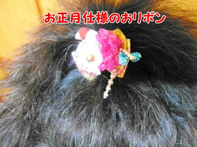 033_20121223105652.jpg