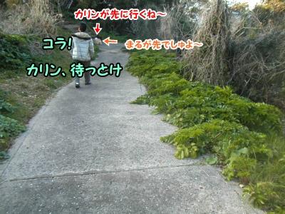 036_20130219213814.jpg