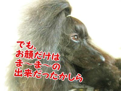 037_20120831213026.jpg