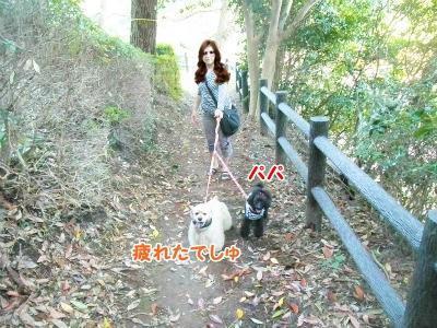 037_20121031213500.jpg