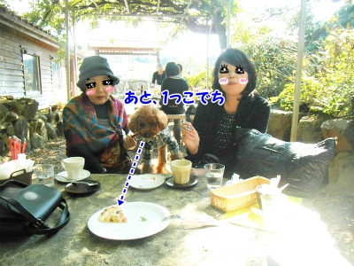 037_20121103222111.jpg