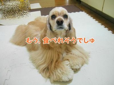 037_20130515211004.jpg