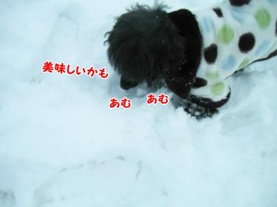 039_20130107211259.jpg