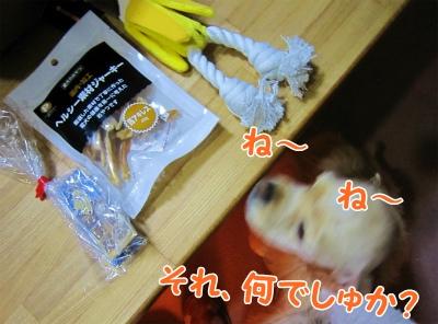 039_20130331220841.jpg