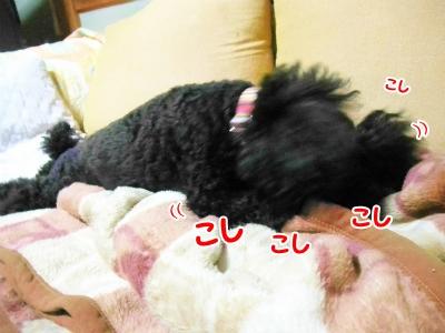 044_20121012221241.jpg