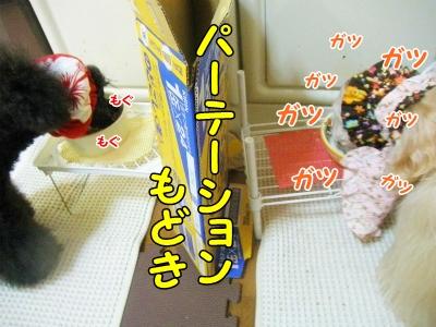 044_20130515211057.jpg