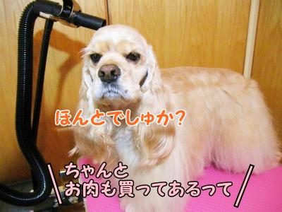 045_20121213220840.jpg