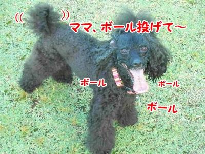 047_20120913212808.jpg