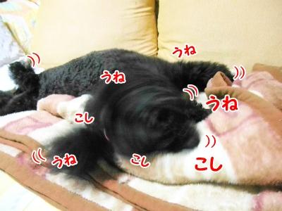047_20121012221240.jpg