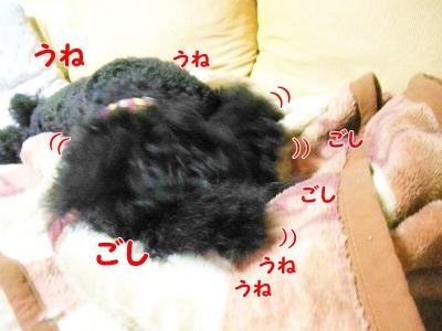 049_20121012221240.jpg