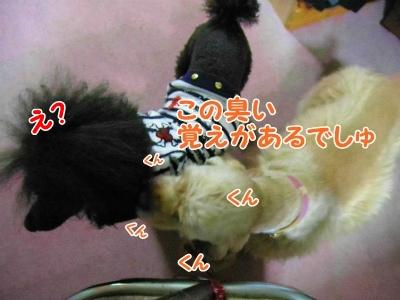 049_20121025212116.jpg