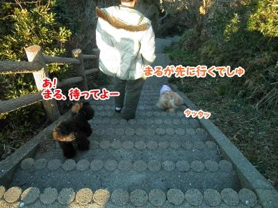 051_20130218144606.jpg