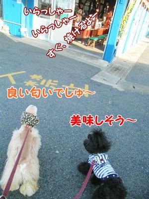 052_20130121213949.jpg