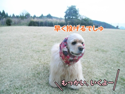 054_20130415213826.jpg