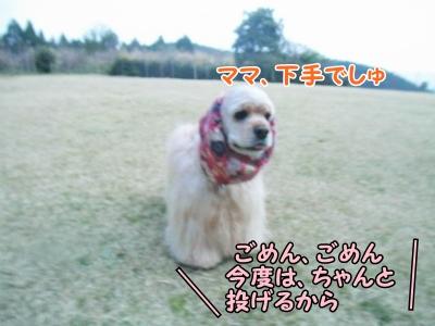061_20130415213836.jpg
