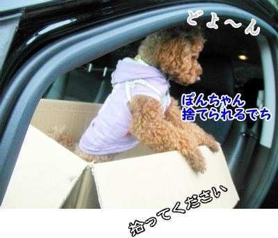 069_20121002215116.jpg