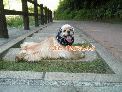 075_20120603213325.jpg