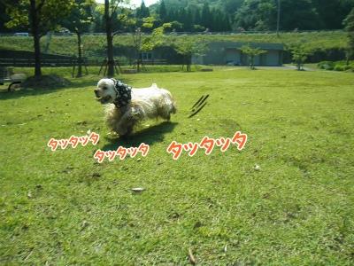 077_20120603213421.jpg
