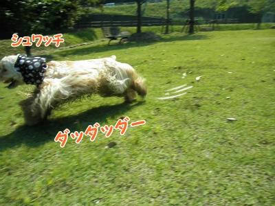 078_20120603213420.jpg