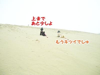 083_20120505233604.jpg