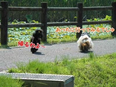 084_20120603213419.jpg