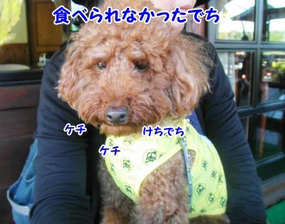 087_20121011213217.jpg