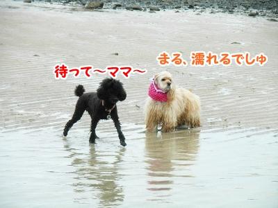 090_20121016220935.jpg