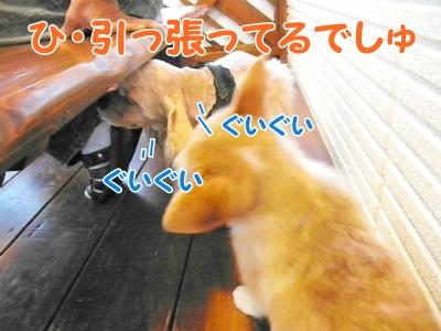 090_20121030231201.jpg