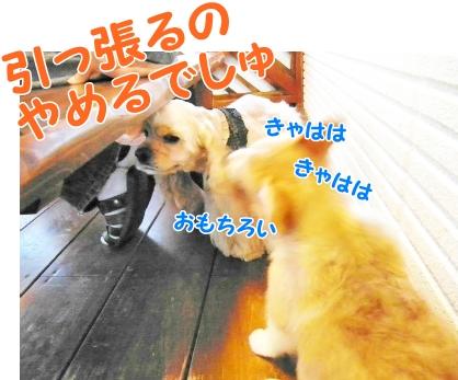 092_20121030231228.jpg