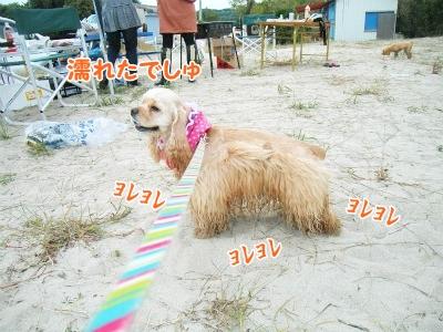 093_20121016220859.jpg