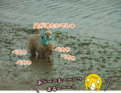 094_20130303202606.jpg