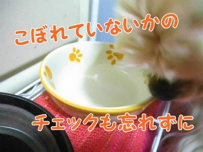 095_20120619214616.jpg