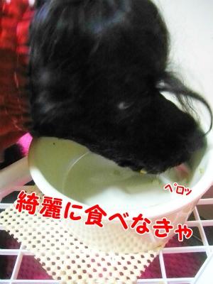 097_20120620205418.jpg