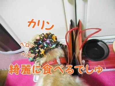 102_20120620205417.jpg