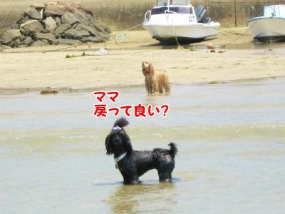 105_20130513230744.jpg