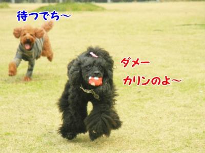 125_20130403212917.jpg