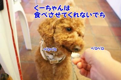 226_20120520204251.jpg