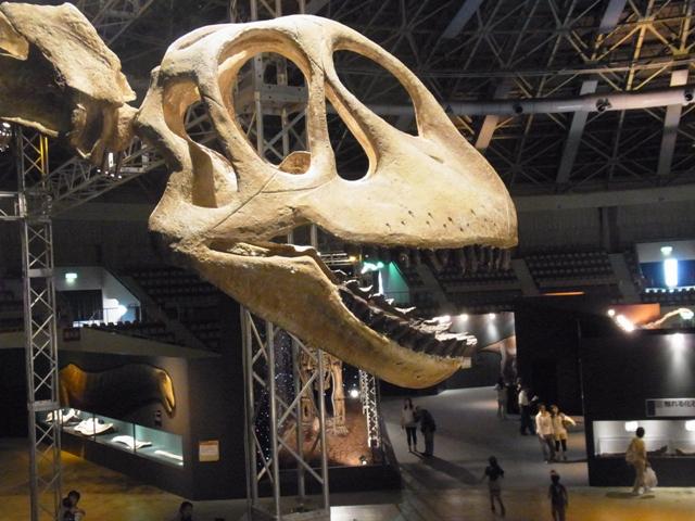 恐竜展_2